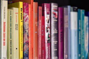books-791923_960_720